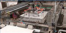 殺菌成套設備生產廠家不銹鋼裝卸籠機
