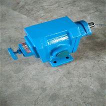 胶水输送泵 外润滑渣油泵耐腐蚀小型泵
