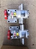 华潮2CY-3/2.5齿轮泵厂家直销
