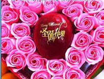 陕西富县水果印刷机 千阳县圣诞苹果印字机