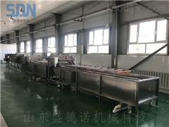 SDN-800净菜加工生产线设备