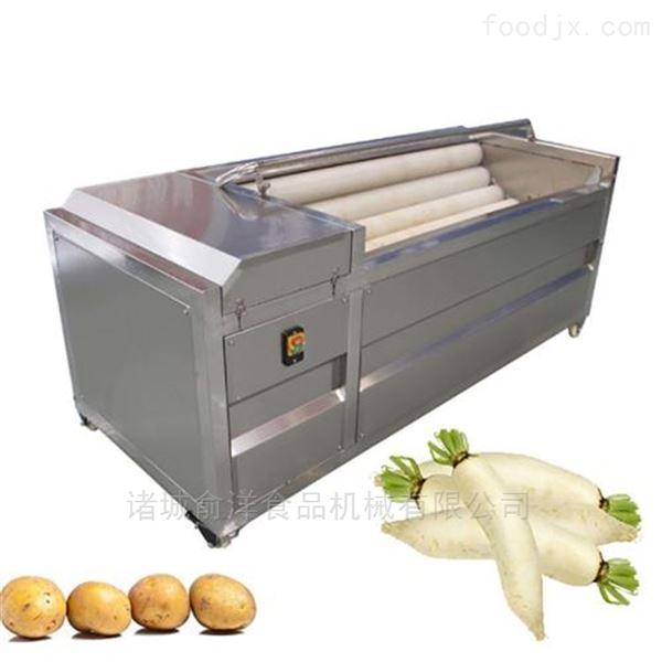 供应莲藕毛辊去皮清洗机