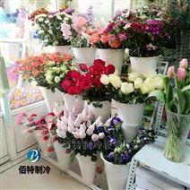 湖南鮮花冷庫,花卉冷庫注意事項及建造要求