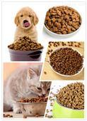 鑫贝发 宠物食品机械设备   猫砂加工设备