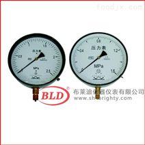 布莱迪一般压力表 表盘2000.4MPaM20×1.5