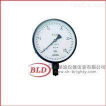 上海布莱迪氨用压力表 径向