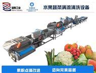 水果蔬菜渦流去污自動化凈菜生產加工線