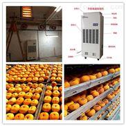柿饼烘干除湿机专业生产