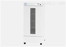低溫器具干燥箱LWO-1000