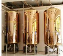 1000L啤酒發酵罐