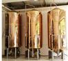 1000L啤酒发酵罐