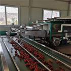 6XY-2小型樱桃预冷分选机 每小时分选1吨