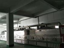 微波碧根果低溫烘焙設備 微波熟化機