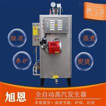 餐饮业专用50KG高温常压燃气蒸汽发生器