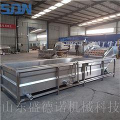 SDN-800大型桑葚清洗机