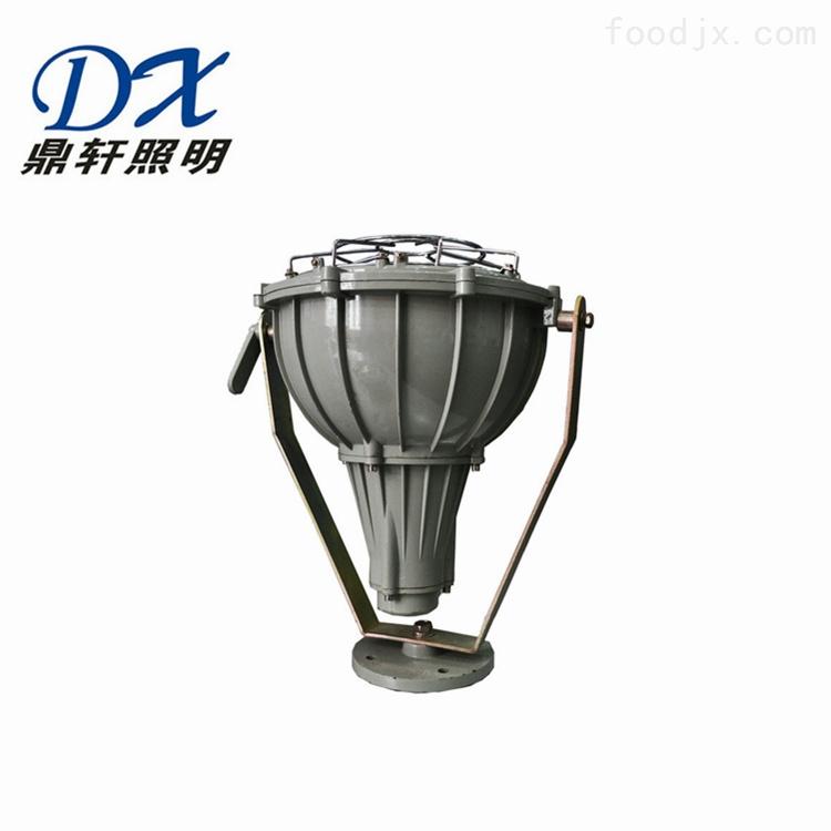 BTC1045防爆投光灯250W/400W生产厂家