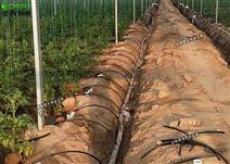重慶育苗蔬菜連棟溫室滴灌水肥一體化方案