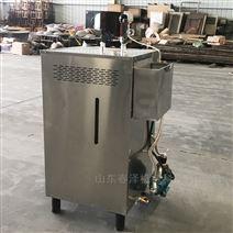 不锈钢电磁高压双室蒸汽发生器