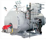 WNS系列节能环保燃气蒸汽锅炉