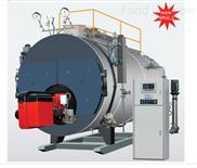 蒸汽卧式(冷凝)锅炉