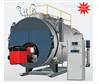 蒸汽臥式(冷凝)鍋爐