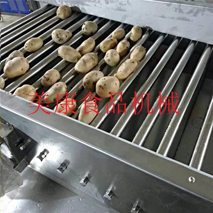 滾杠式分選設備-果蔬分級機生產廠家