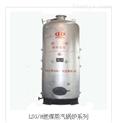 LSG/H燃煤蒸汽锅炉系列