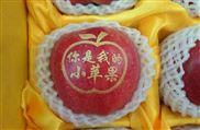 台北市苹果印字机厂家 福州苹果打字机图片