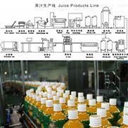 全自动瓶装橙汁饮料生产线设备