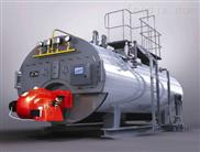 燃气蒸气锅炉