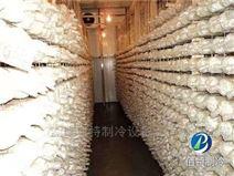 食用菌冷庫造價多少錢一平方