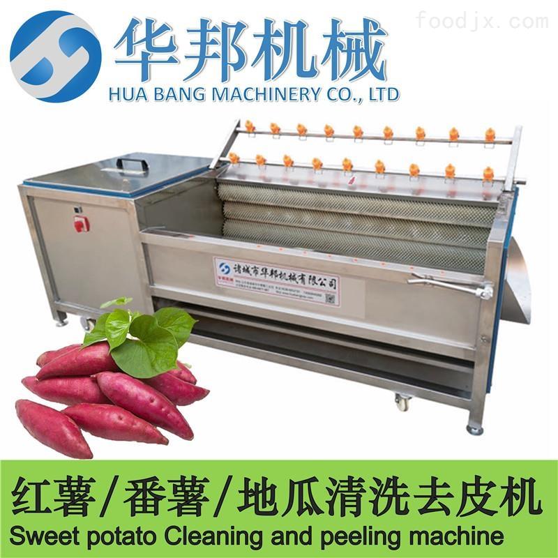 红薯毛刷清洗机 红薯清洗流水线