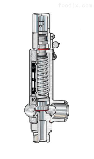 阀门Niezgodka safety valve 110型