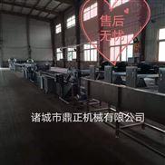 DZJX-100多功能蔬菜清洗機設備