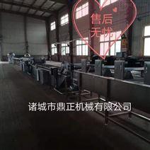 DZJX-100多功能蔬菜清洗机设备
