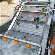 蔬菜清洗304不锈钢链板