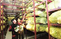 山东3000平米果蔬保鲜库安装造价是多少?