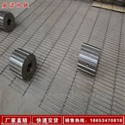 乙型不锈钢输送带