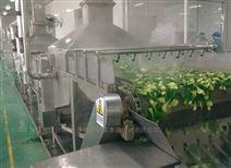 蔬菜清洗漂烫加工生产线