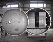干燥设备厂家全自动大型食品专用冻干机