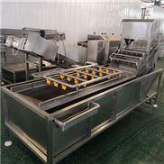 叶菜气泡清洗机生产厂