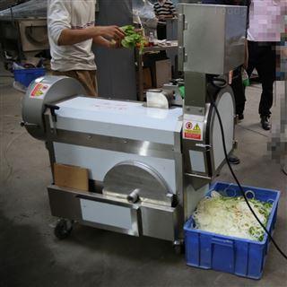 DY-301不锈钢小型多功能切菜机
