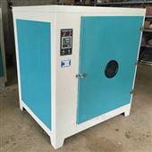 电热鼓风干燥箱101系列