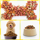 小型狗粮加工机器