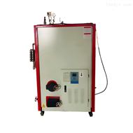 RM-150150公斤生物质蒸汽发生器