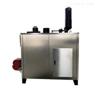 RM-500500公斤燃气蒸汽发生器