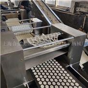 全自动薄脆饼干生产线 韧性饼干成形设备