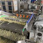 4000叶菜清洗生产流水线 果蔬清洗设备