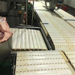 小龙虾水产加工生产线模块式塑料链板