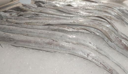 """渔业产值超两千亿 冷链物流为水产品运输""""护航"""""""
